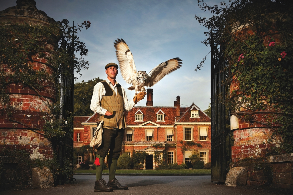 Falconry at Lainston House