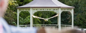 lh © burlison wedding falconry gallery