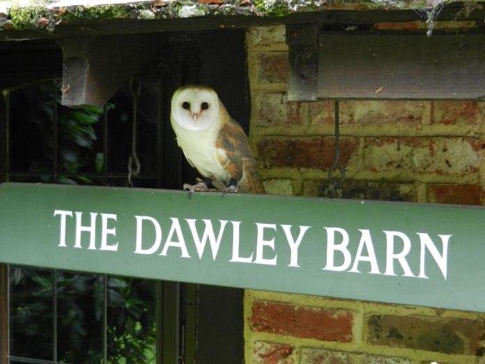 The Dawley Barn