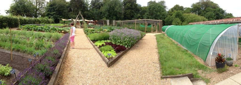 Kitchen Garden at Lainston House