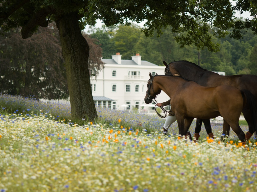 Equestrian at Coworth Park