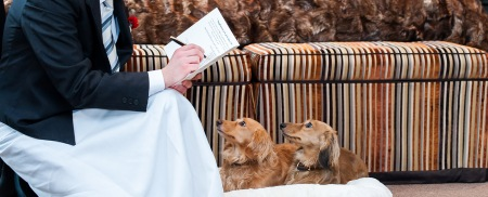Very Important Pets at The Chesterfield Mayfair