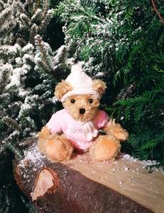pat_the_bear