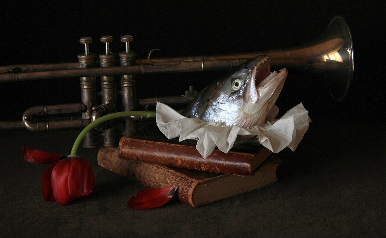 Fish Head-min